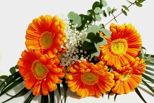 fiori a domicilio
